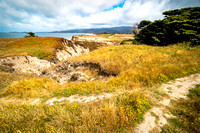 Half Moon Bay Coastal Trail